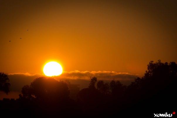 008/365 - Sol Naciente