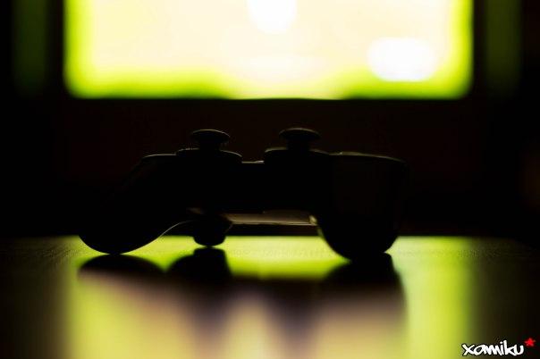 013/365 - Gamer