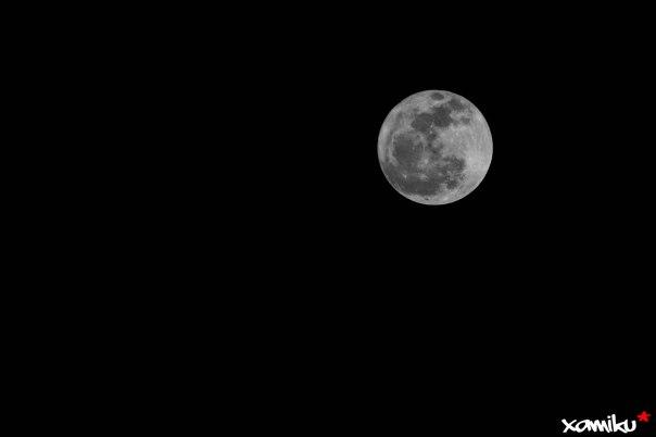 056/365 - Full Moon