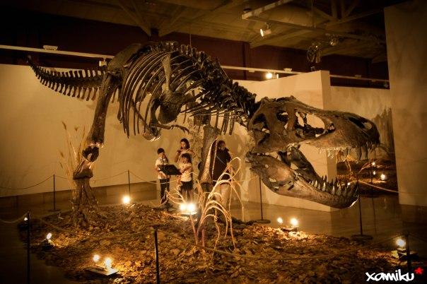 132/365 - T-Rex