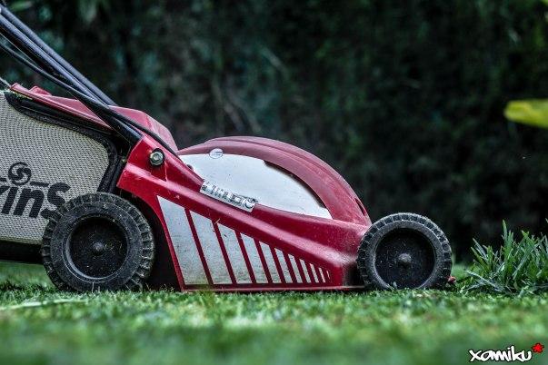 159/365 - Mi Ferrari jardinero