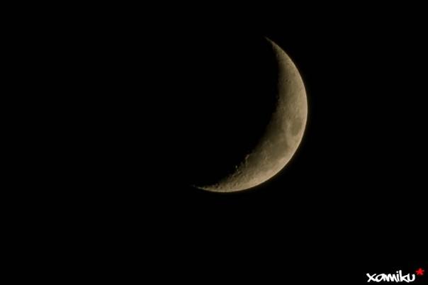 164/365 - Luna Lunera