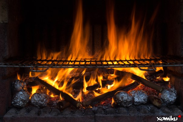 205/365 - BBQ time