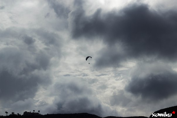 Proyecto 365 - 215 - Volando libre