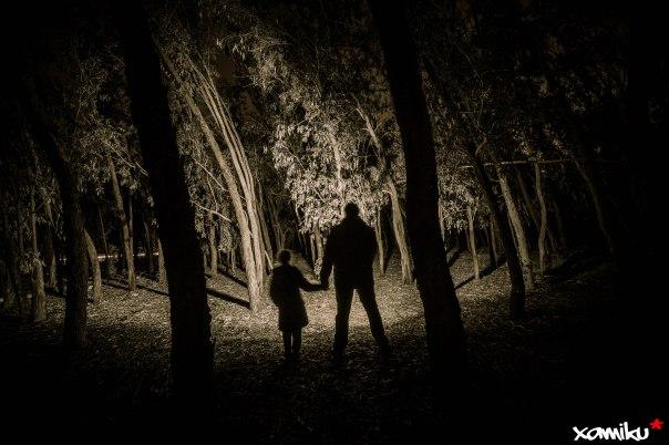 Proyecto 365 - 329 - Paseando por el bosque