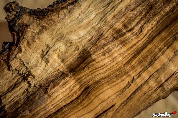 Proyecto 365 - 349 - Gueule de bois